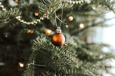 Sapin de Noël naturel